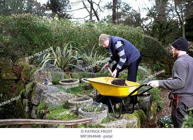 Two men working in garden, Bournemouth, County Dorset, UK, Europe