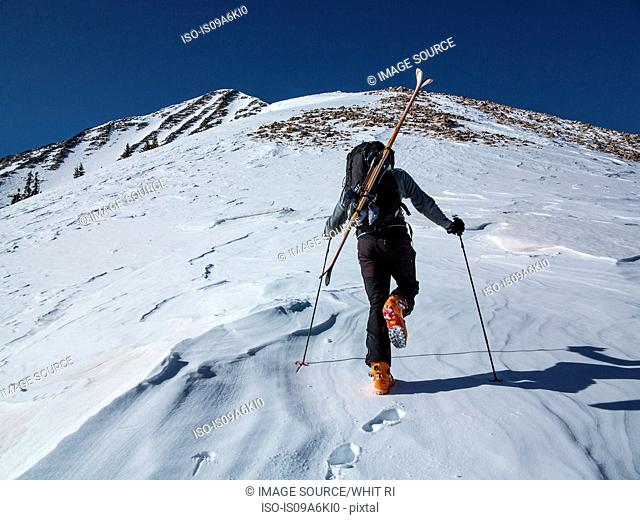 Cross country skier hiking up slope