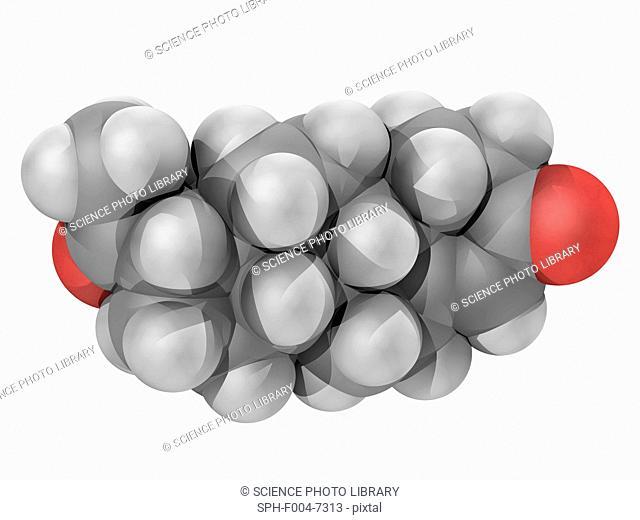 17 гидроксипрогестерон у беременных