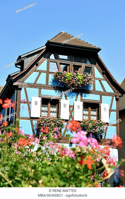 France, Haut Rhin, Alsace Wine Route, Eguisheim, labelled Les Plus Beaux Villages de France (The Most Beautiful Villages of France)