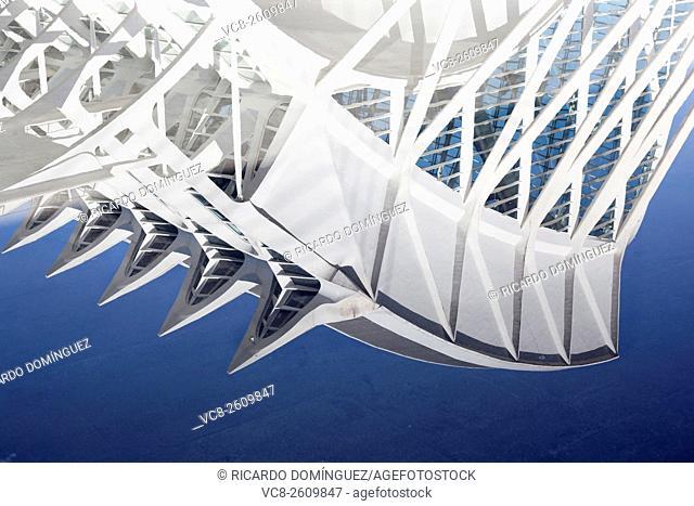 Water reflection of the Prince Philip Sciences Museum, designed by Santiago Calatrava. Valencia, Spain