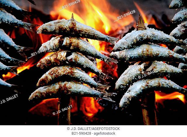 Food:  'Espeto de Sardinas' (grilled sardines) a speciality of Malaga. Spain