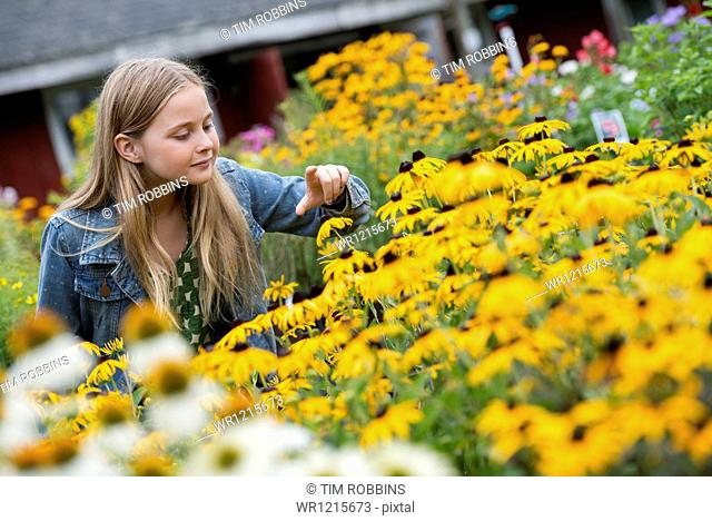 An organic flower plant nursery. A young girl looking at the flowers