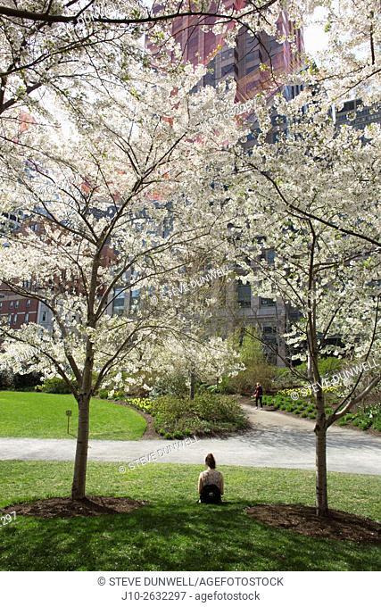 Greenway, spring, Boston, MA