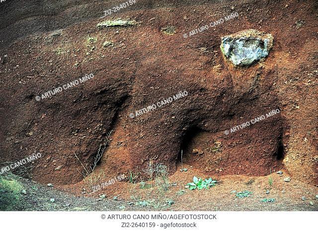 The volcano Croscat. The Garrotxa Volcanic Zone Natural Park. Girona province, Spain