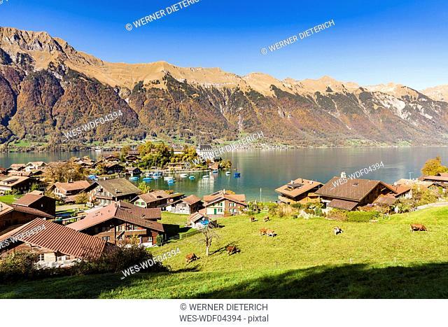 Switzerland, Bern, Bernese Oberland, Iseltwald, Lake Brienz, Seeburg castle