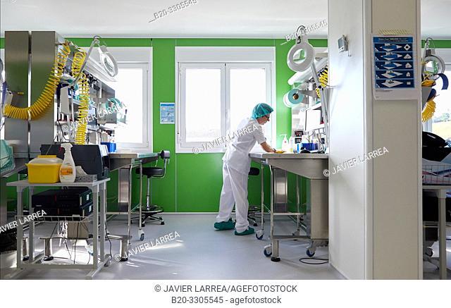 Cleaning woman, cleaner, Sterilization, Autoclave Cleaning, Hospital Donostia, San Sebastian, Gipuzkoa, Basque Country, Spain