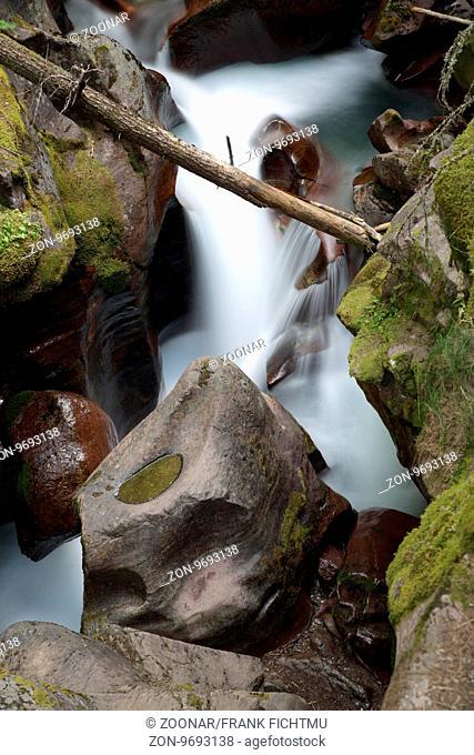 Avalanche Creek Glacier National Park