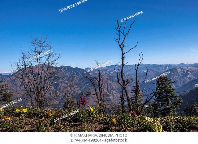 Mountains, mashobra, himachal pradesh, india, asia