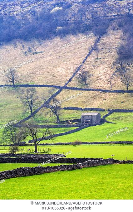 Barn and Dry Stone Walls Upper Wharfedale Yorkshire