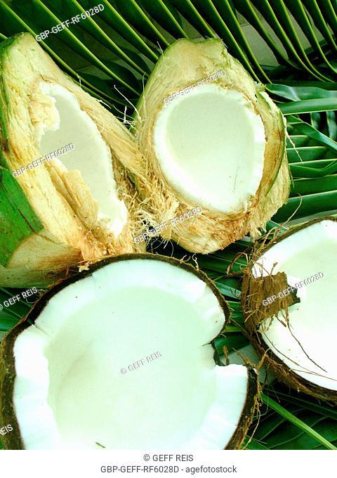 Coconut, São Paulo, Brazil