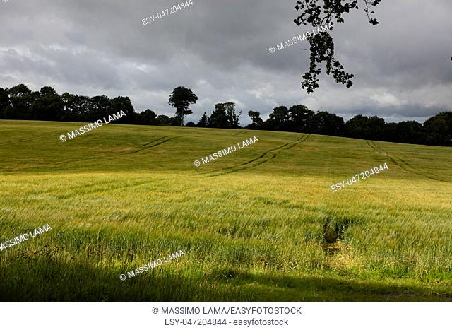 Panorama in Antrim country in Northern Ireland