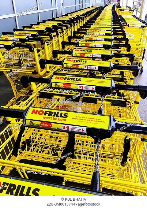 Shopping carts stacked in a long array at a Supermarket, Ontario, Canada