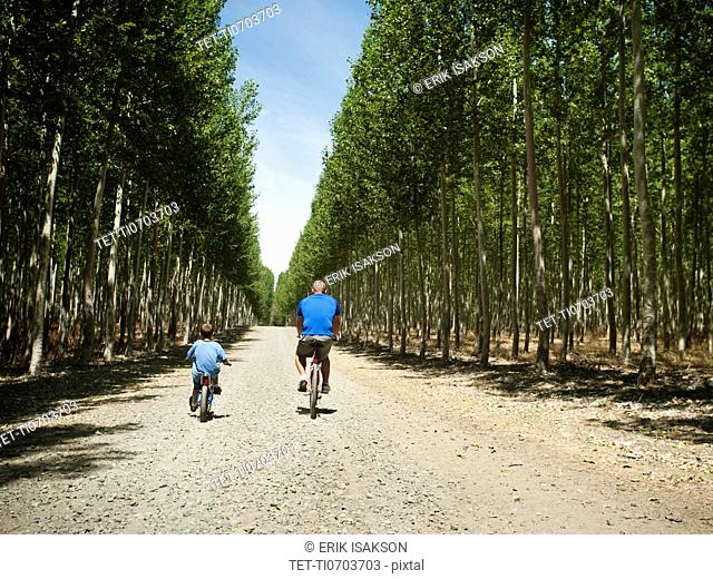 Father with son 8-9 cycling up country road