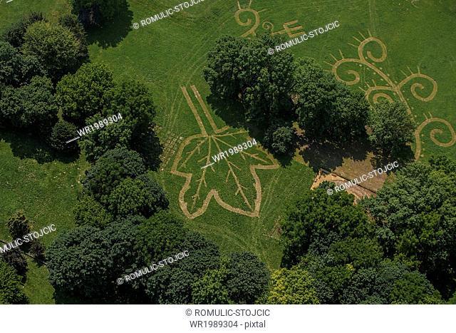 Landscape gardening, aerial view