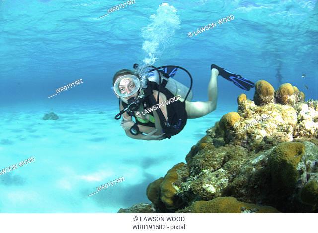 Bikini Diver at Stingray City Sandbar, Grand Cayman Island, Cayman Islands, Caribbean