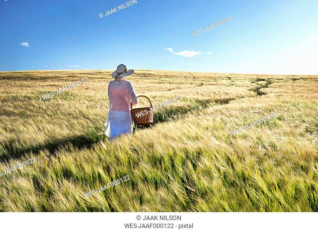 Estonia, woman walking in a cornfield with basket in her hand