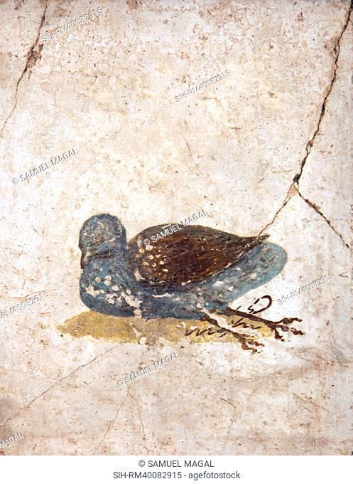 Italy, Naples, Naples National Archeological Museum, Stabiae, Villa of Arianna 15, Birds