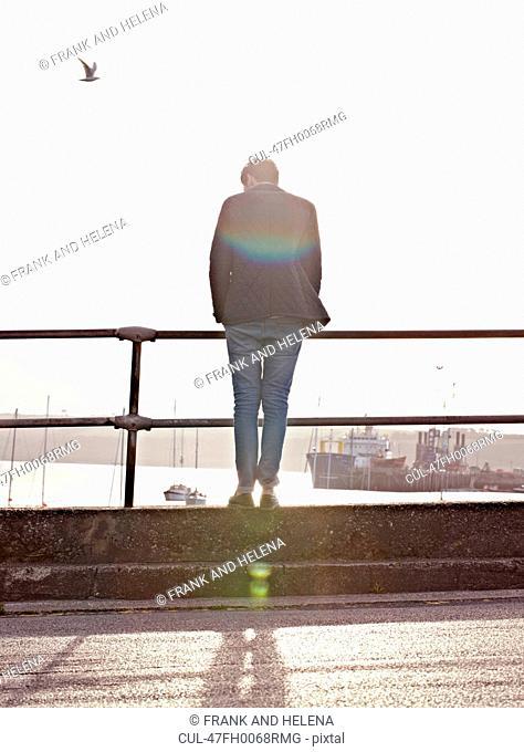 Man peering over railing of harbor