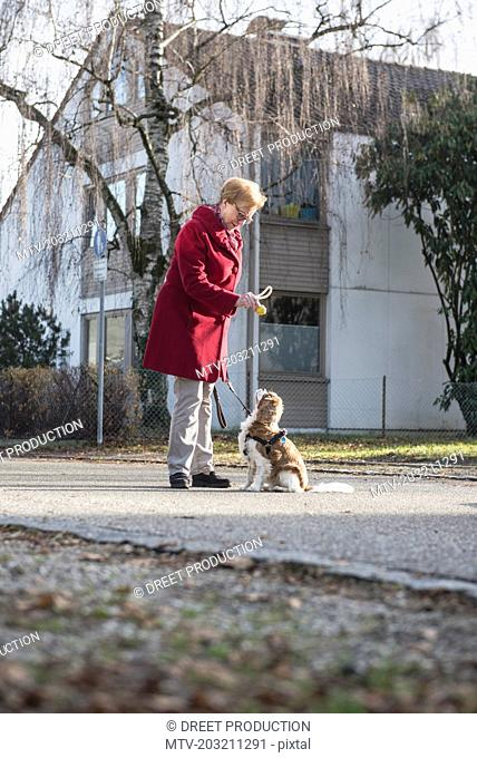 Old woman and dog standing on the street with toy