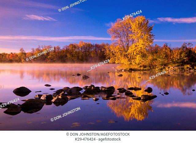 Island with maple on the Vermilion River. Naughton. Ontario. Canada
