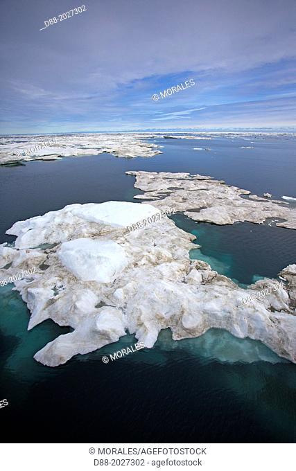 Russia , Chukotka autonomous district , Wrangel island , Pack ice