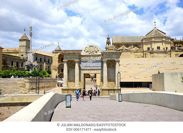 Footbridge Puente Romano Gate Bridge and Cathedral of Cordoba, Andalucía, Spain