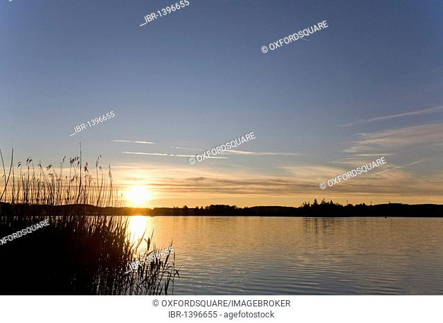 Sunset on Lake Constance, Europe