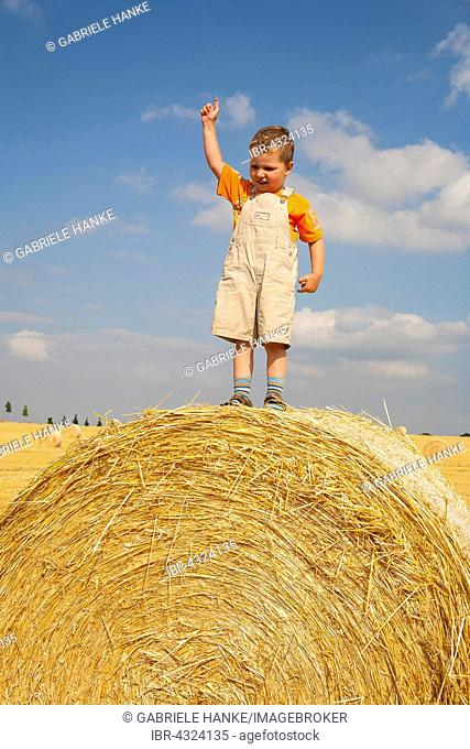 Little boy standing proudly on a straw bale, Germany