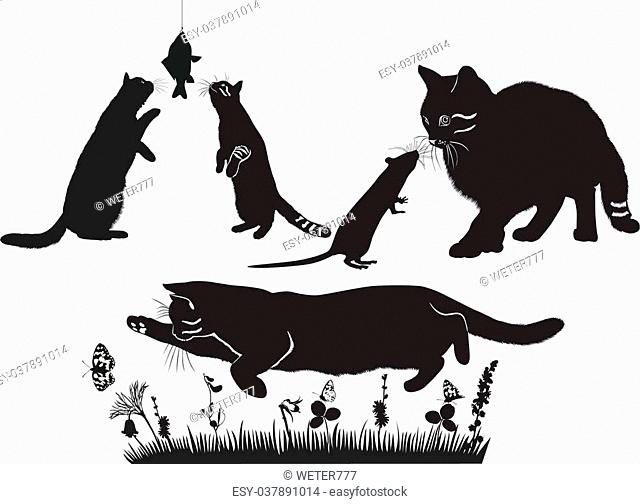 cats are and mouse, fish, butterflies compositions animals