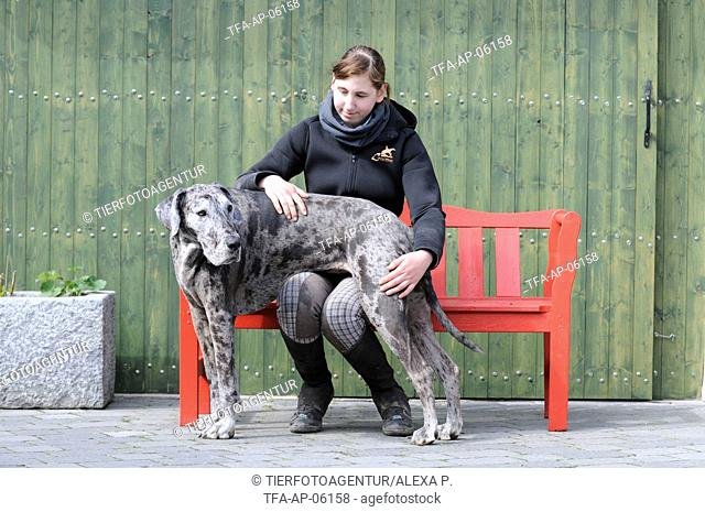 woman and Great Dane