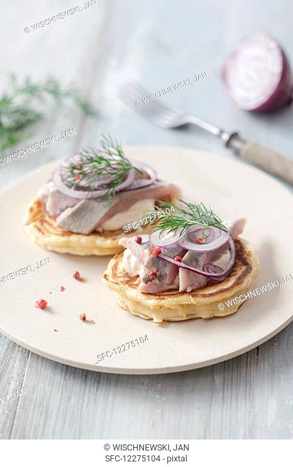 Pancakes with herring, onions and dill