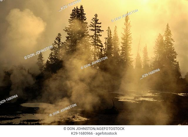 West Thumb Geyser Basin, Yellowstone NP, Wyoming, USA