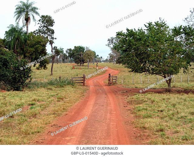 Landscape, Highway, Bonito, Mato Grosso do Sul, Brazil