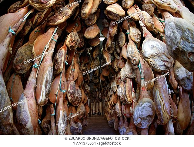 Trevelez drier hams  Alpujarra, Granada, Andalusia, Spain