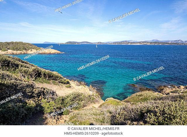 France, Var, Iles d'Hyeres, national park of Port-Cros, Island of Porquerolles, point of Bon Renaud