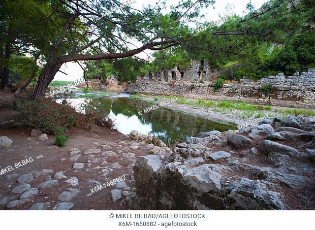 Olympos city ruins  Olympos coastal National Park  Antalya province  Mediterranean coast  Turkey
