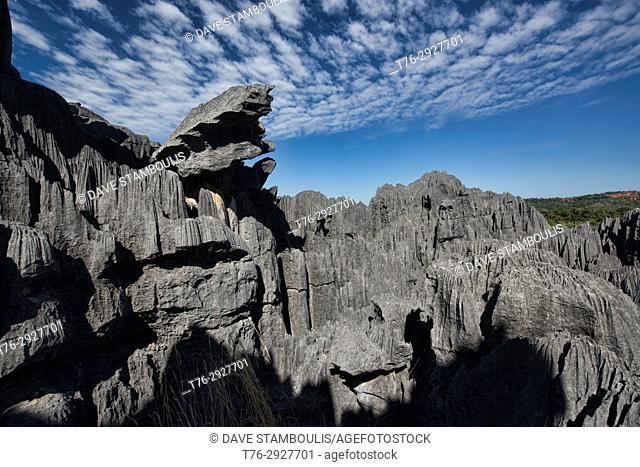The view from above, Tsingy de Bemaraha National Park, Madagascar