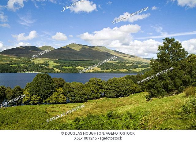 LOCH TAY PERTHSHIRE Ben Lawers mountain range and lochside trees