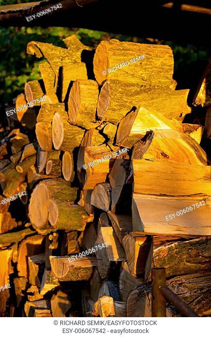 still life of logs