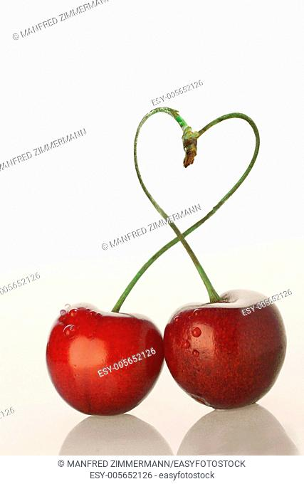 two red cherries with style on white background