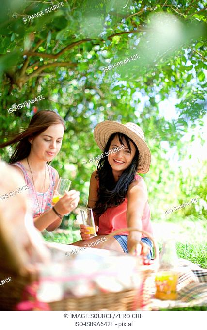 Women picnicking together in park