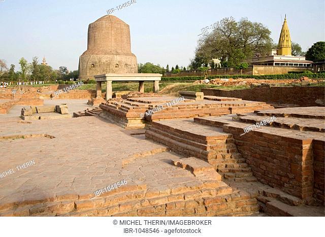 Dhamekh stupa, Isipatana Deer Park, Sarnath, Uttar Pradesh, India, South Asia