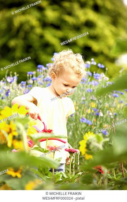 Little girl standing in the garden watering flowers