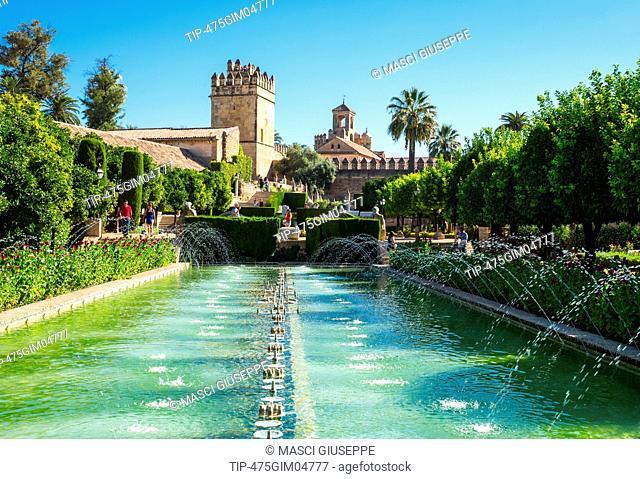 Spain, Cordoba, the gardens and pool of the Alcazar de los Reyes Cristianos