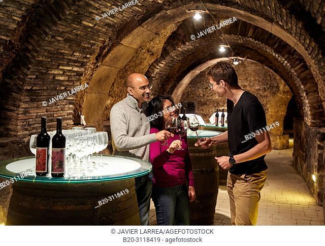 Guide with tourists, Wine tasting, Cellar wine barrels, Rioja Alavesa, Araba, Basque Country, Spain, Europe