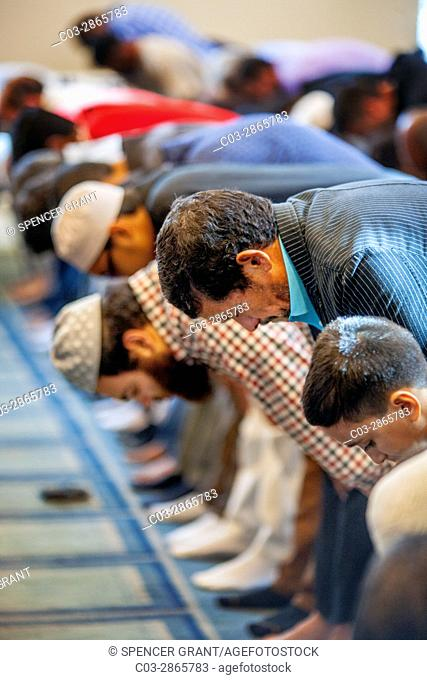 Listening to an Iman's sermon or Khutbah, Muslim men bow in reverence during Friday afternoon prayers at religious services at an Anaheim, CA, mosque