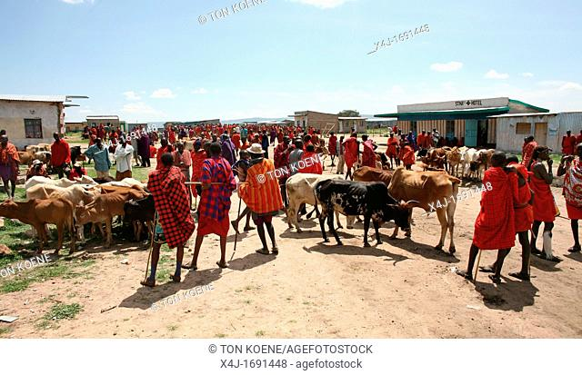 Weekly livestock market in the Maasai Mara game reserve  The village is inhabited by Massai who consider their animals as most important in live  Each farmer...