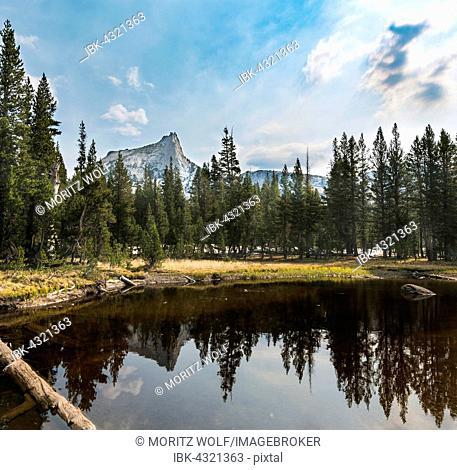 Reflection in a lake, Cathedral Peak, Sierra Nevada, Yosemite National Park, Cathedral Range, California