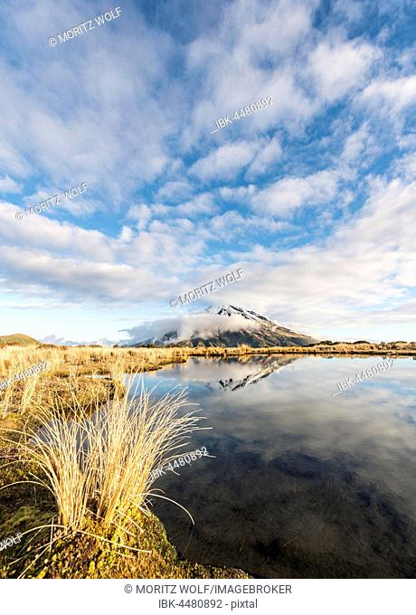 Reflection in Puakai Tarn, stratovolcano Mount Taranaki or Mount Egmont, Egmont National Park, Taranaki, New Zealand